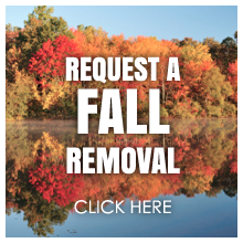 Request a Fall Dock Lift Removal